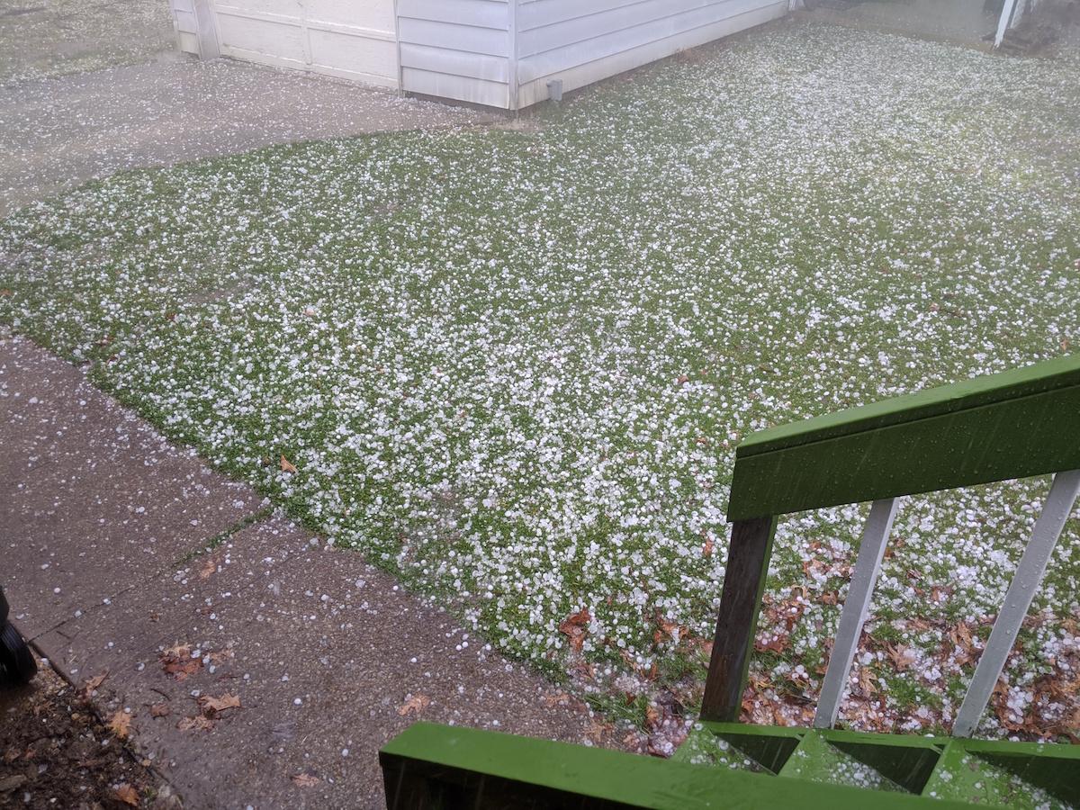 hail in yard
